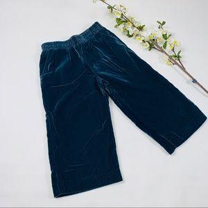 Gymboree girls light blue velvet winter pants NWT